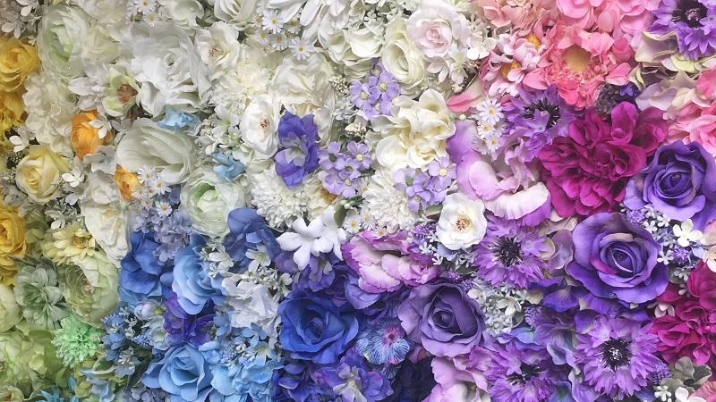プリンセスブライダルフェア-カラーローズ
